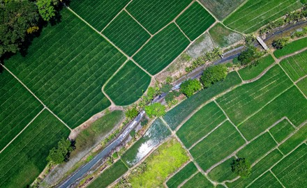 Bird S Eye View Of River In Middle Of Green Fields 1483880